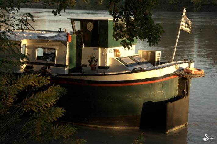 peniche Rhône Bretagne drapeau chat fleuve paradis